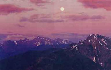 Голая Брук Уильямс Удивляет Своими Прекрасными И Весьма Красивыми Прелестями Стоя На Коленках Голая Знаменитость